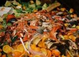 Середній американець викидає понад 100 кілограмів їжі в рік
