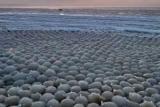 Льодова аномалія у вигляді куль в Фінляндії змінила пляж до невпізнання